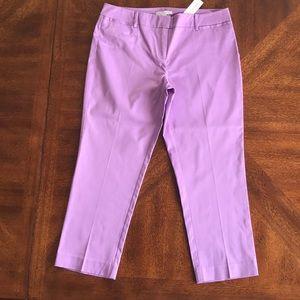 New York & Company stretch lilac capri pants 6 NWT